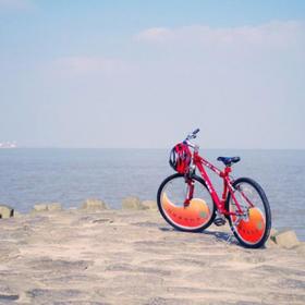 11.2横沙岛骑行:看大海、抓螃蟹、农家菜(1天)