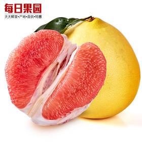 琯溪红肉蜜柚 5.5元/斤 精选单果2.8斤 新鲜红心水果柚子-835050