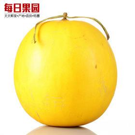 缅甸黄金蜜瓜 约1斤每个 精选新鲜水果黄河蜜瓜黄金哈密瓜-864808