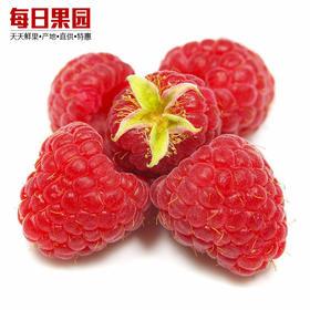 新鲜树莓水果 125g盒精选 红树莓覆盆子果茸生鲜孕妇水果-864809