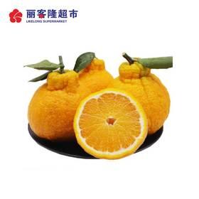 春见粑粑柑 丑柑橘子 新鲜水果粑粑柑 480g-500g/份