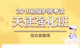 【医疗卫生】2019初级护师考试天使强化班组合套餐课