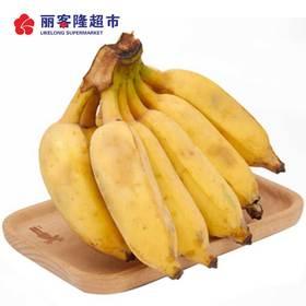 新鲜芭蕉 1000g-1200g/份