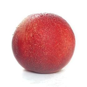 崂山油桃,一件12颗5斤,79元包邮