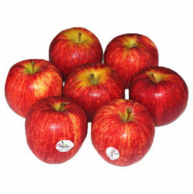 智利佳丽苹果,14颗只要69包邮