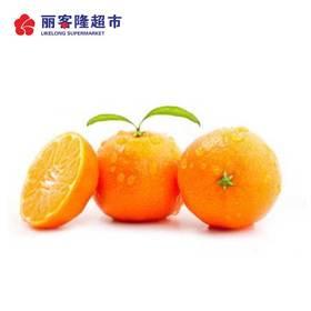 灯笼桔 新鲜水果 500g/份