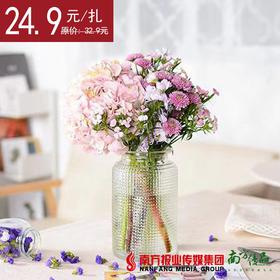 【22号提货】混合绣球花束 1扎