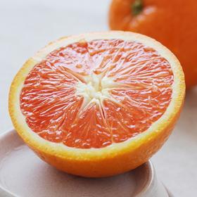 小刺激伦晚黄橙脐橙中华红红橙 新鲜湖北秭归现摘鲜橙产地直发