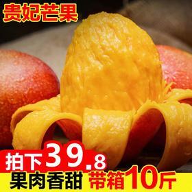 海南贵妃芒果带箱10斤新鲜当季水果小红金龙青批发包邮