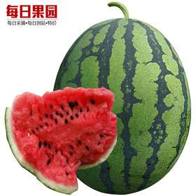 南宁中科甜王西瓜 1.5元/斤 精选1个装18斤 新鲜南域当季水果-864818