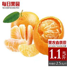 优级芦柑 精选5斤装 薄皮柑丑柑 果农产地直供价1.1元/斤-864817