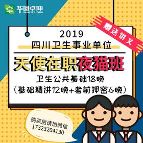 2019卫生公共基础天使在职夜猫班(网课+直播)