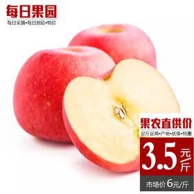静宁红富士苹果 精选3斤装 新鲜水果-835003
