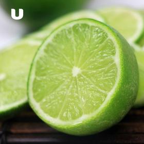 塔希提无籽香水柠檬  | 皮薄多汁 肉绿果香 酸爽提神 一天一杯  美丽肌肤吃出来