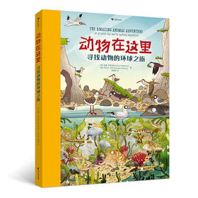 动物在这里: 寻找动物的环球之旅(堪称纸质版《地球脉动》,带你探索世界21处典型动物栖息地,找一找,数一数,动物科普与益智游戏完美融合,培养专注力和观察力!)