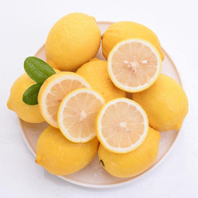 四川安岳黄柠檬 12个大果 90-110g
