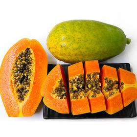 湛江雷州自然熟冰糖红心木瓜2-3个约4.5-5斤