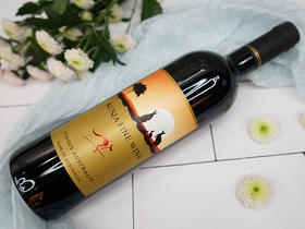 澳妮优质干红葡萄酒