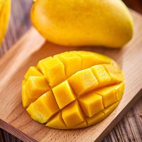 当季水果   广西台农芒 果园现采直发 果香味浓 肉嫩细腻多汁  8斤装包邮