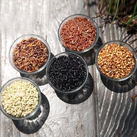 有机五彩米:黑米、红米、黄米、紫米、绿米,自然天成!