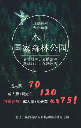 特惠*木王国家森林公园