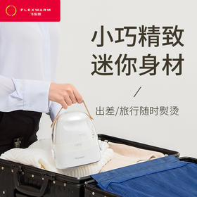 飞乐思熨斗家用手持挂烫机小型便携式蒸汽电烫斗旅行迷你衣服熨烫