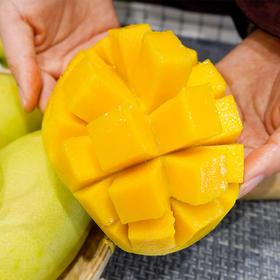 大口啃的芒果才过瘾 广西玉芒 细腻香甜 5斤装/9斤装