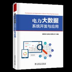 *电力大数据系统开发与应用