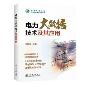 *电力大数据技术及其应用