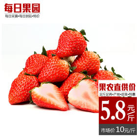 久久牛奶草莓 精选1斤装 北域草莓新鲜奶油草莓-835032