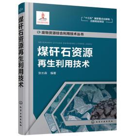 废物资源综合利用技术丛书——煤矸石资源再生利用技术