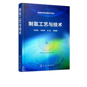 *氢能利用关键技术系列——制氢工艺与技术