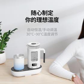 生活元素冷热水壶套装家用一体多功能煮茶器花茶杯全自动加厚玻璃