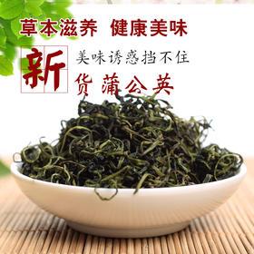 野生蒲公英花茶新鲜干茶100g