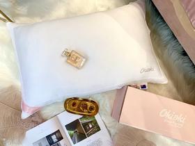 法国PROEEM美容枕