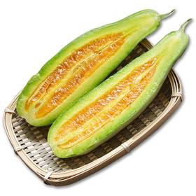 【新品上市】山东羊角蜜瓜5斤装丨产地直发丨鲜甜多汁