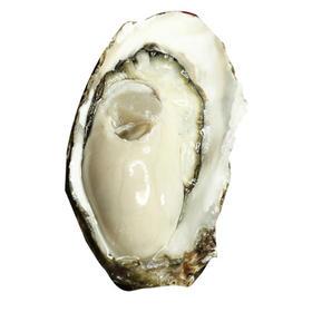 乳山牡蛎,一件五斤,65元包邮