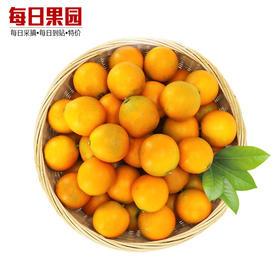 特级金桔 5.6元/斤 精选1.5斤装 融安滑皮金桔新鲜水果脆皮脆蜜甜小金桔-835072