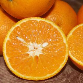 当季新鲜 | 江永夏橙 新鲜晚熟橙子 香甜多汁 不打蜡不上色 现摘现发