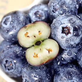 """【长白山 • 蓝美眉蓝莓】富含花青素,堪称眼睛的""""守护神""""枝头现摘 比进口蓝莓新鲜30天 蓝莓果香 208项检测合格,更安全!"""