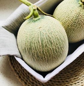 当季鲜果 | 海阳网纹瓜 果肉饱满鲜嫩 清甜多汁 现摘现发~ 2个装 4-4.5斤