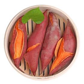 精选 |【福建特产六鳌红薯】软糯香甜,下单现挖!六鳌富硒红蜜薯中大果5斤