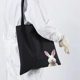【赠品随机发货】艺术北京联名限量款艺术帆布包