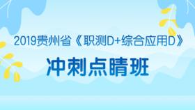 2019贵州省《职测D+综合应用D》冲刺点睛班