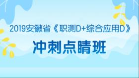 2019安徽省《職測D+綜合應用D》沖刺點睛班