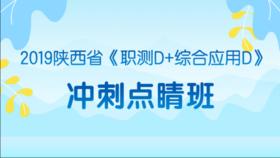 2019陜西省《職測D+綜合應用D》沖刺點睛班