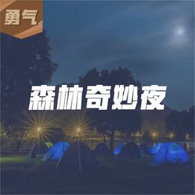 『露营』森林奇妙夜