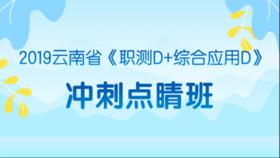 2019云南省《职测D+综合应用D》冲刺点睛班