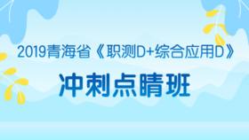 2019青海省《职测D+综合应用D》冲刺点睛班