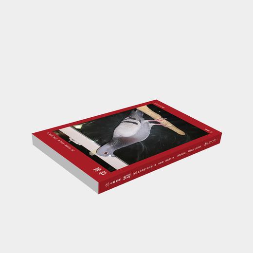 """""""网红""""艺术家阿马利娅·乌尔曼 :《优越》艺术书 商品图1"""
